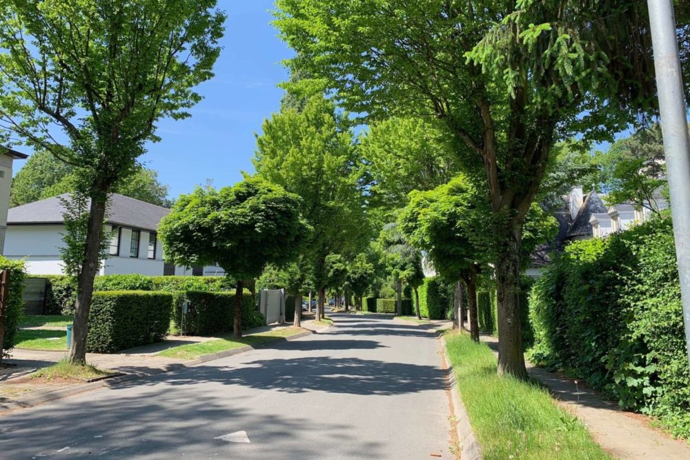 Uccle